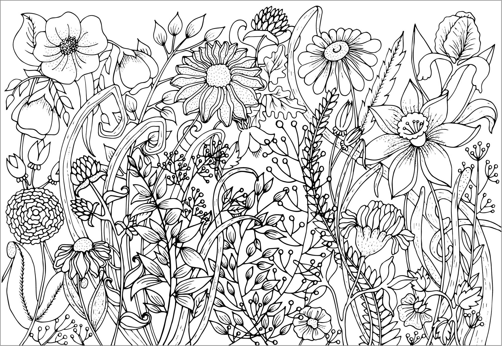 flower coloring book pages cute spring flowers flowers adult coloring pages pages book coloring flower