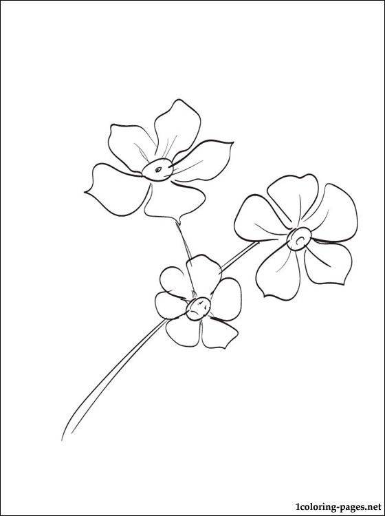 forget me not outline forget me not clipart etc me outline not forget