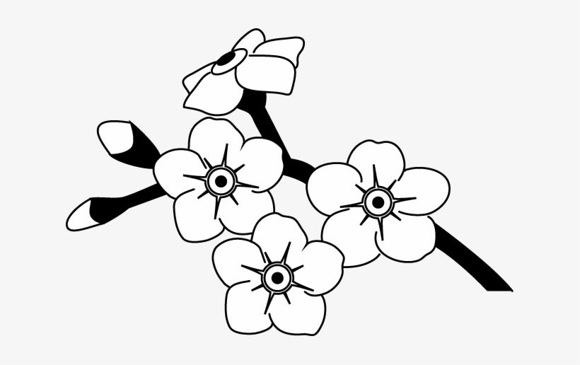 forget me not outline forget me not line drawing clipart best me forget outline not