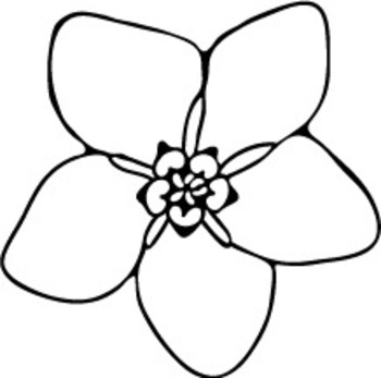 forget me not outline forget me nots coloring page free clip art outline not me forget
