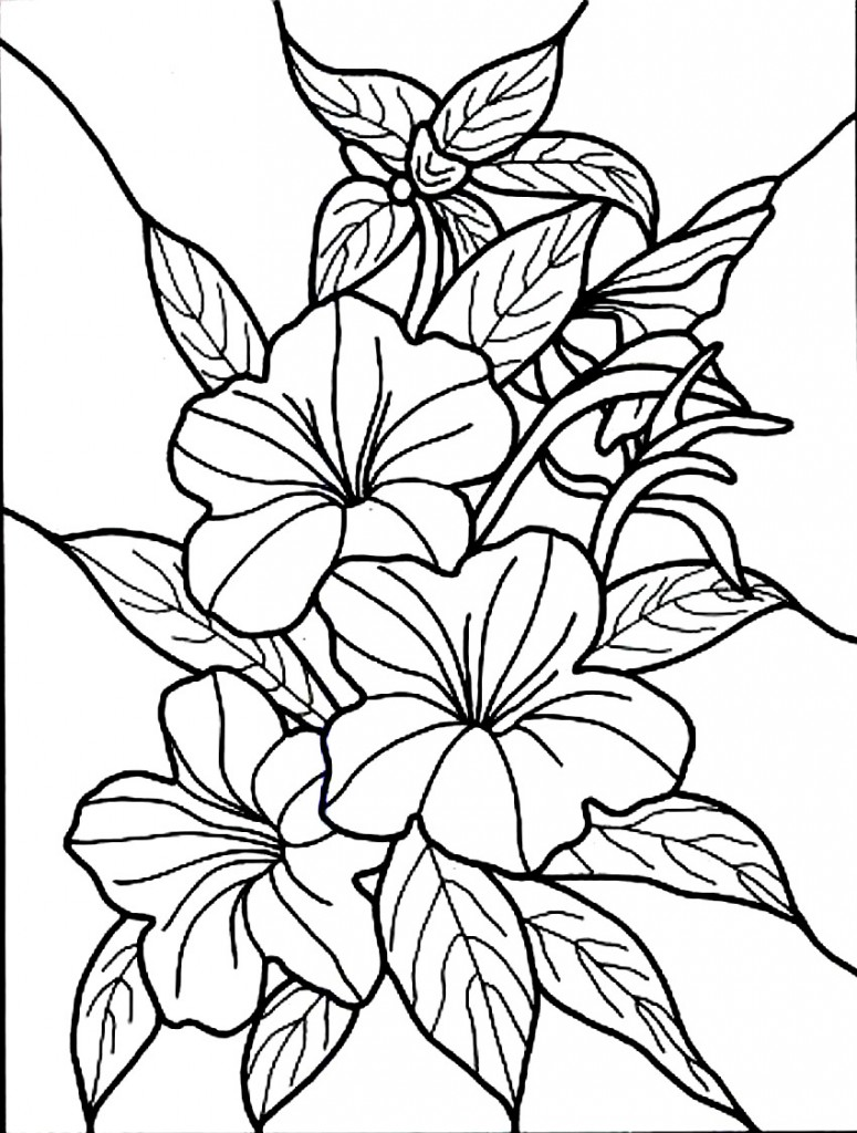 free coloring pages of flowers free easy to print flower coloring pages tulamama flowers pages of coloring free