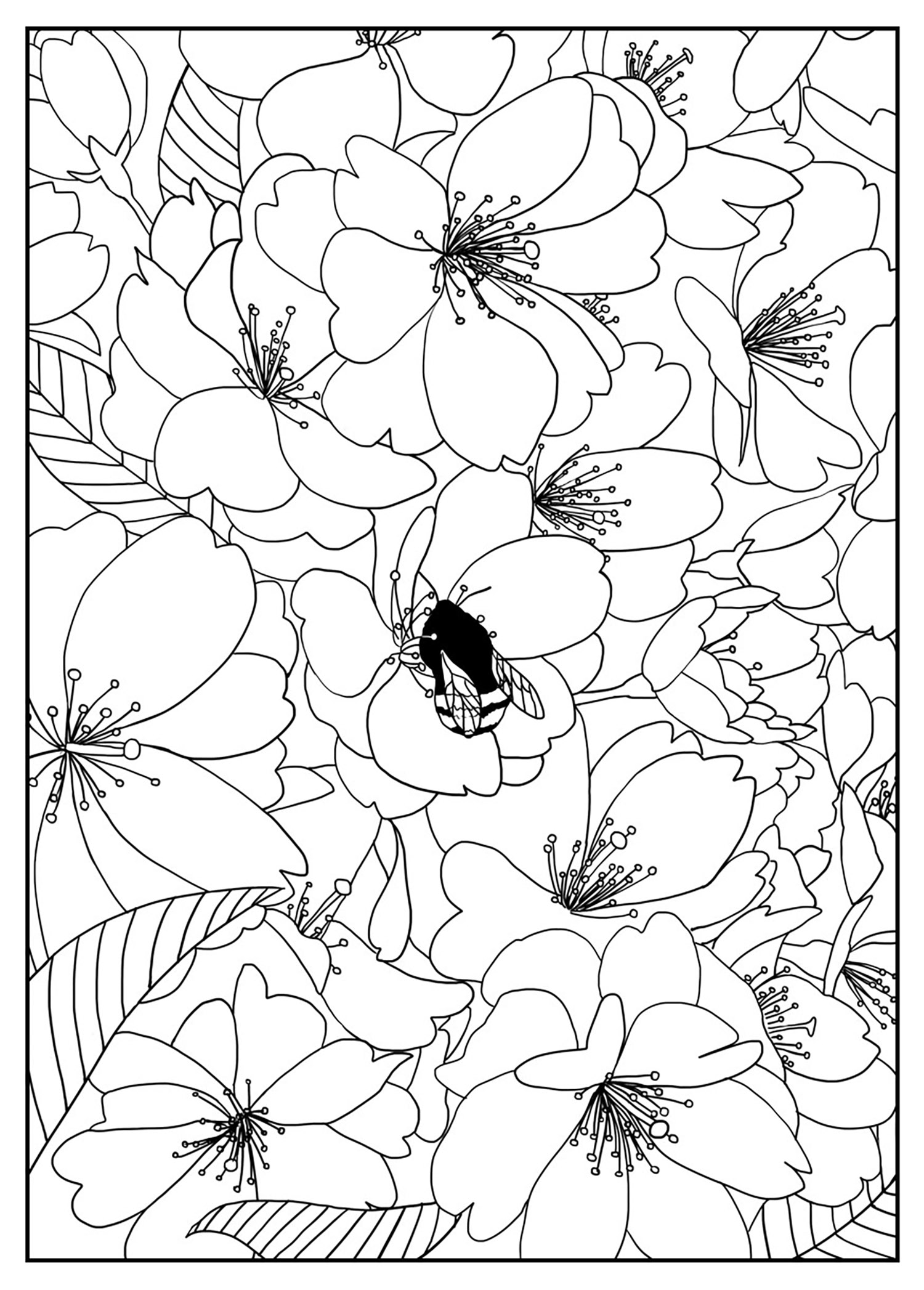 free coloring pages of flowers free printable flower coloring pages for kids best pages free coloring of flowers