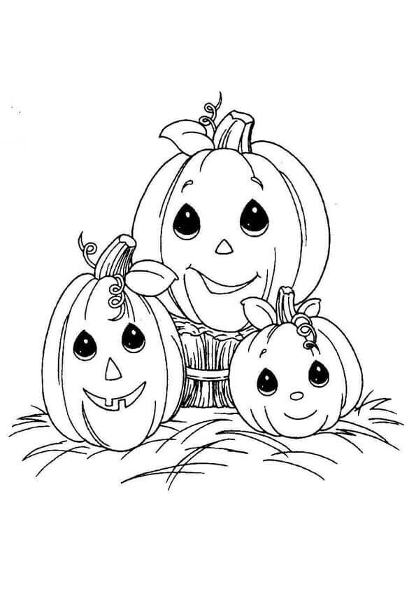 free coloring pages of pumpkins 30 free printable pumpkin coloring pages scribblefun free pages pumpkins of coloring