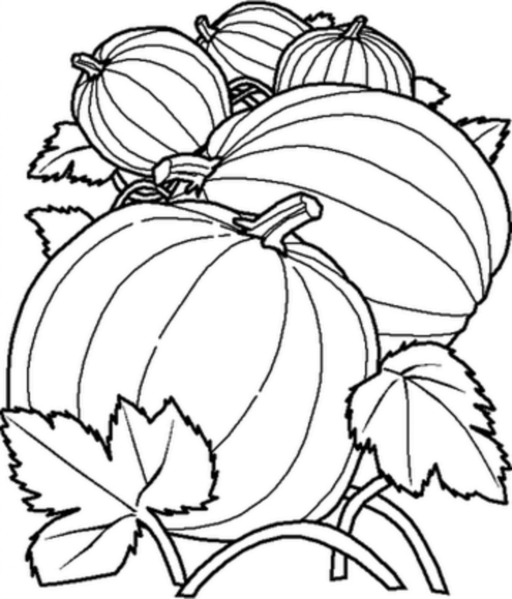 free coloring pages of pumpkins free printable pumpkin coloring pages for kids cool2bkids pages free coloring of pumpkins
