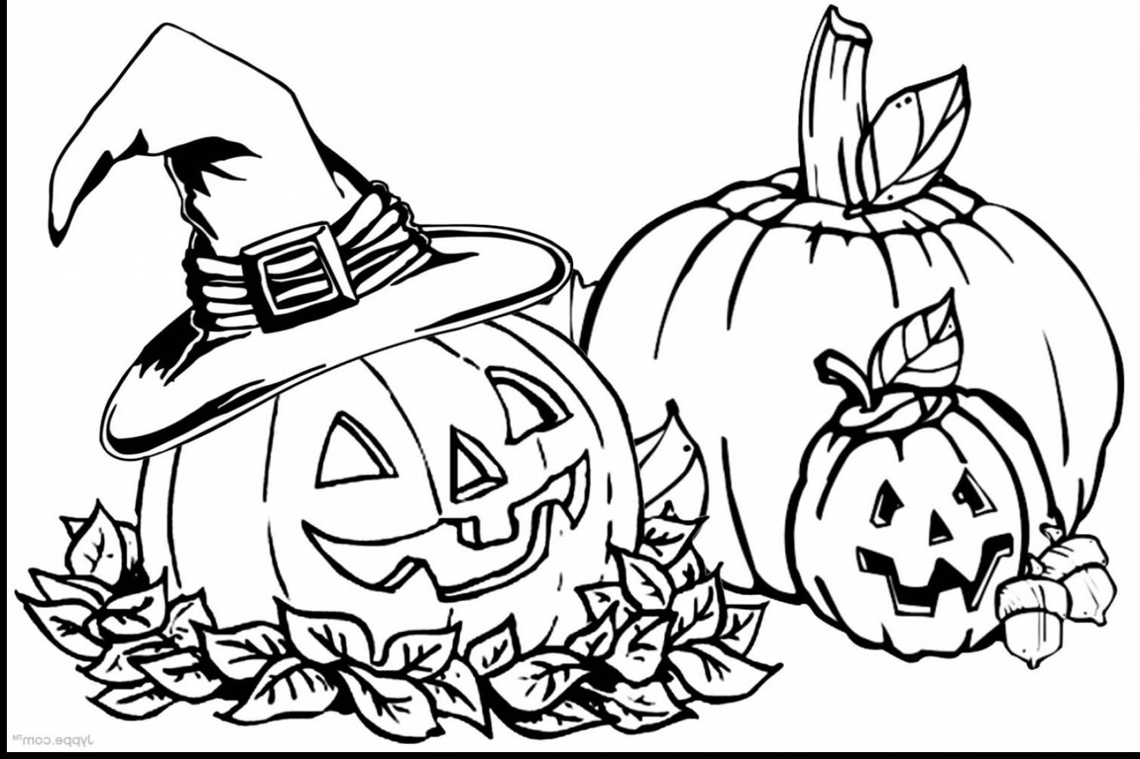 free coloring pages of pumpkins spookley square pumpkin coloring pages coloring pumpkins pages of free