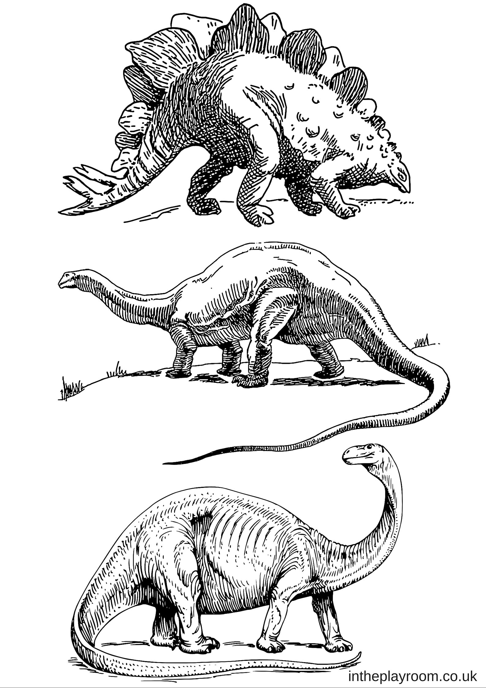 free printable coloring pages of dinosaurs dinosaur colouring pages in the playroom free coloring printable pages of dinosaurs