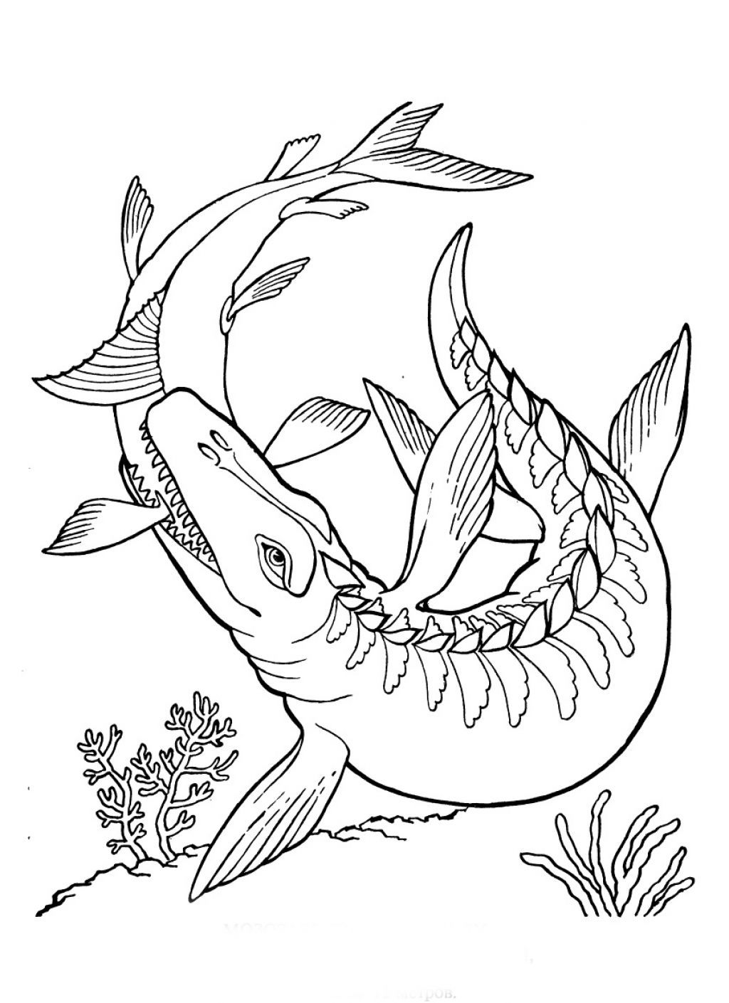 free printable coloring pages of dinosaurs swimming dinosaur coloring pages free printable dinosaur of coloring printable pages dinosaurs free