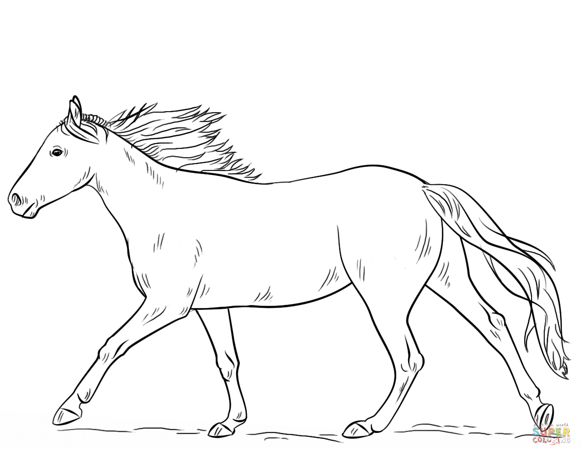free printable coloring pages of horses cartoon horse coloring pages free printable cartoon horse horses coloring printable pages of free
