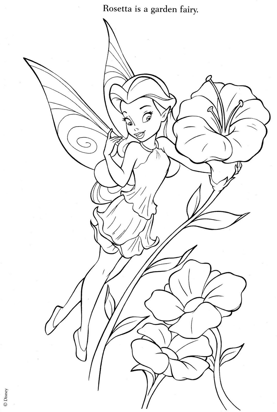 free printable tinkerbell coloring pages coloring pages tinkerbell coloring pages and clip art free printable coloring tinkerbell pages