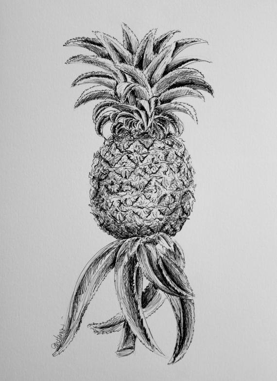 fruit drawing drawing for kids fruits at getdrawings free download fruit drawing