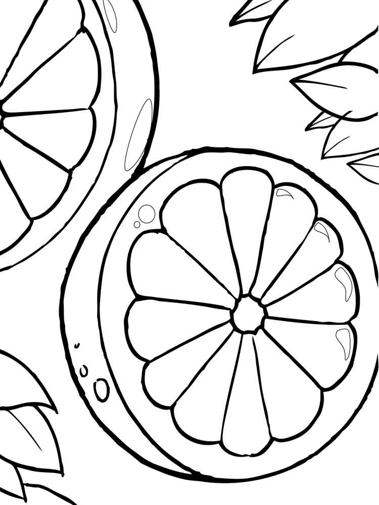fruits images for coloring various types of fruits coloring page kids play color coloring images fruits for