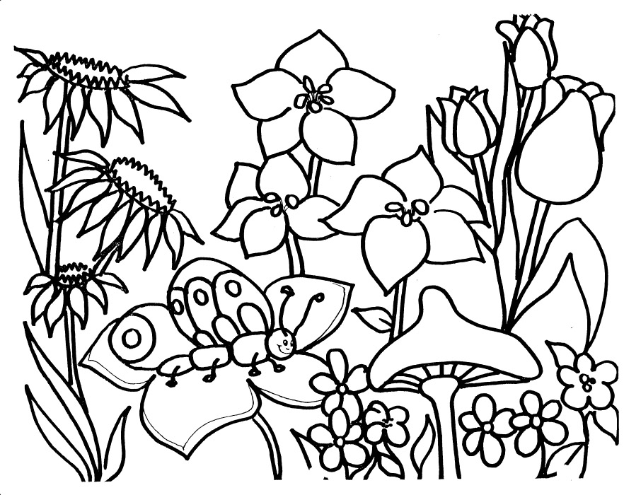 garden colouring pages color my gardensaturated intense garden plots garden pages colouring