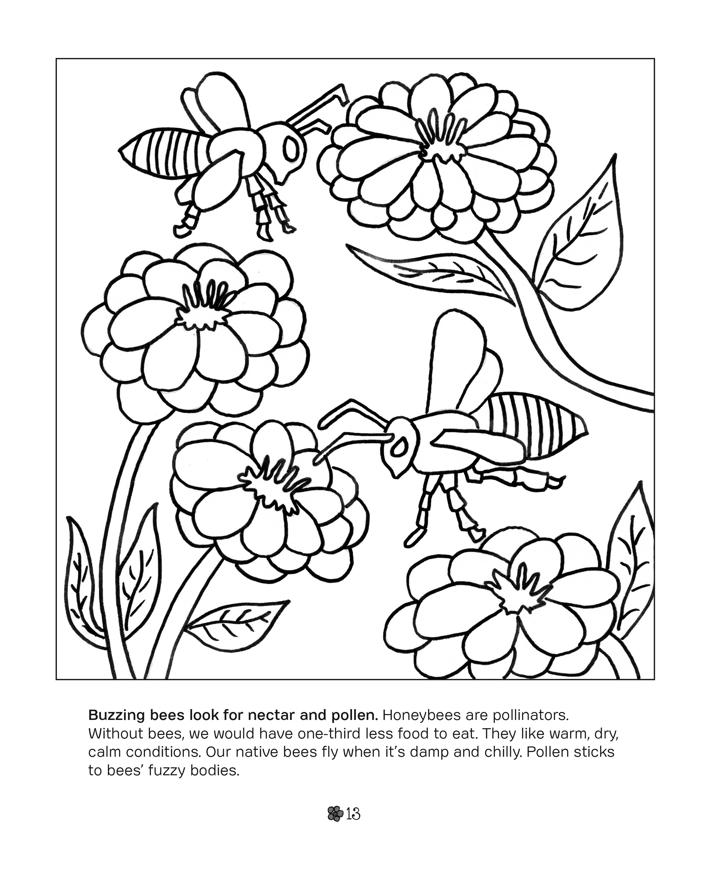 garden colouring pages garden coloring page images for kids coloring home colouring garden pages