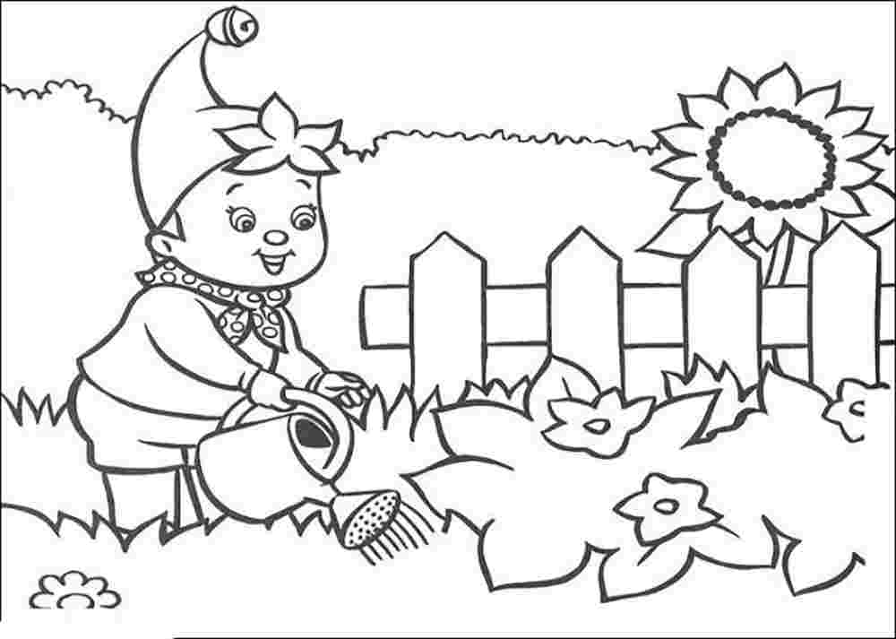 gardening pictures to colour beautiful garden coloring page free printable coloring pages pictures gardening colour to