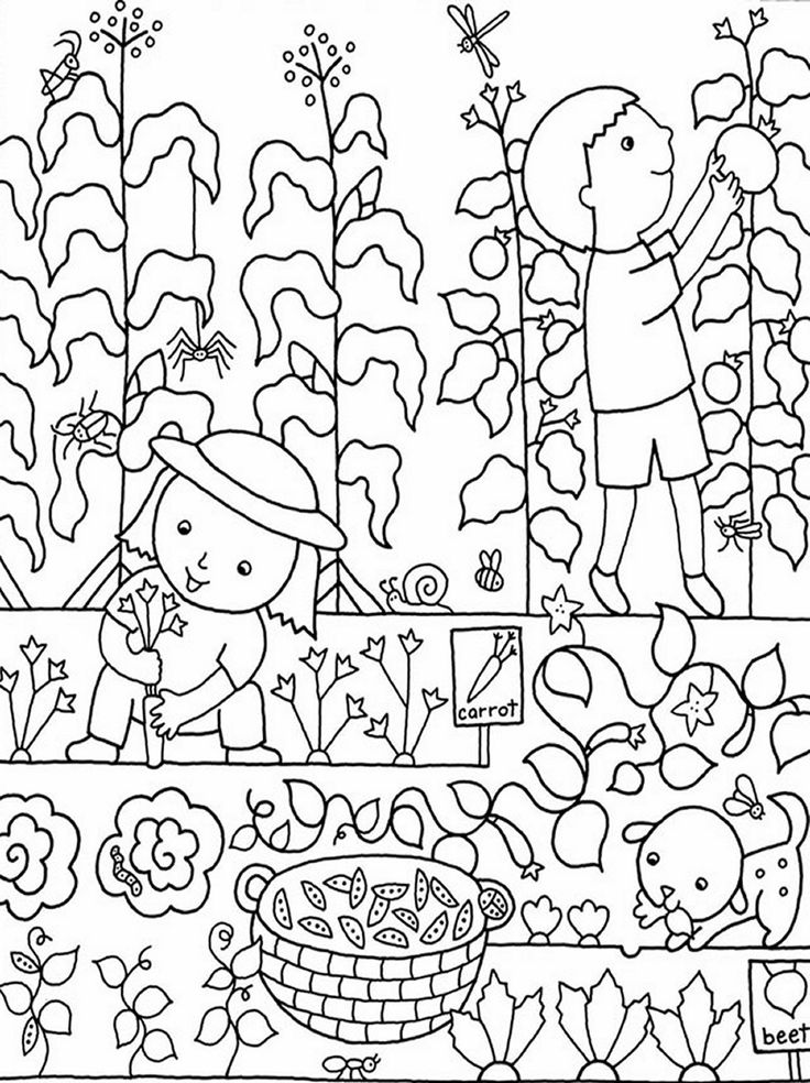 gardening pictures to colour garden coloring page images for kids coloring home pictures colour gardening to