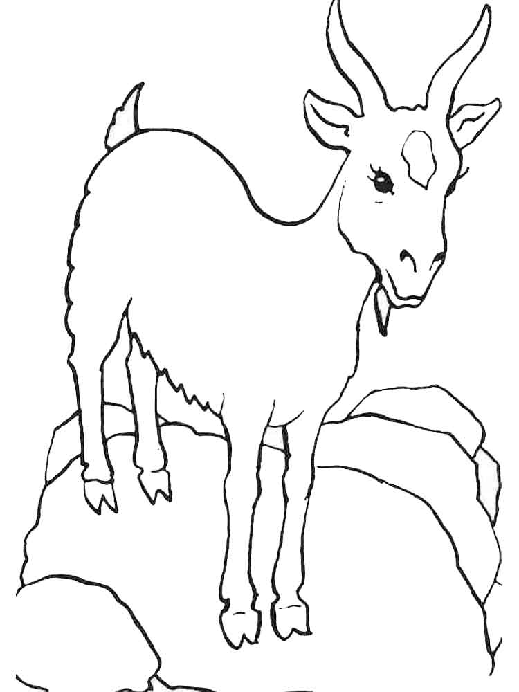 goat coloring images 19 animal goats printable coloring sheet images goat coloring