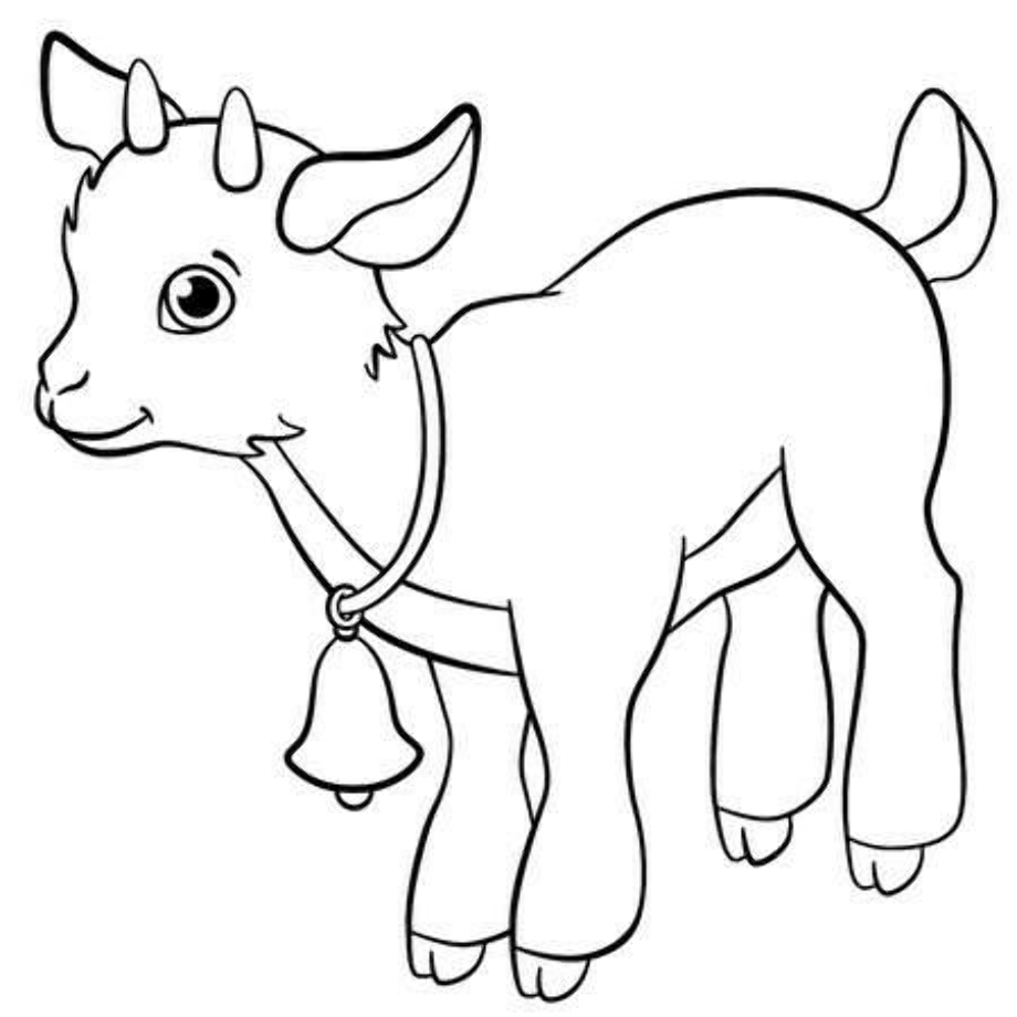 goat coloring images realistic domestic goat coloring page free printable goat coloring images