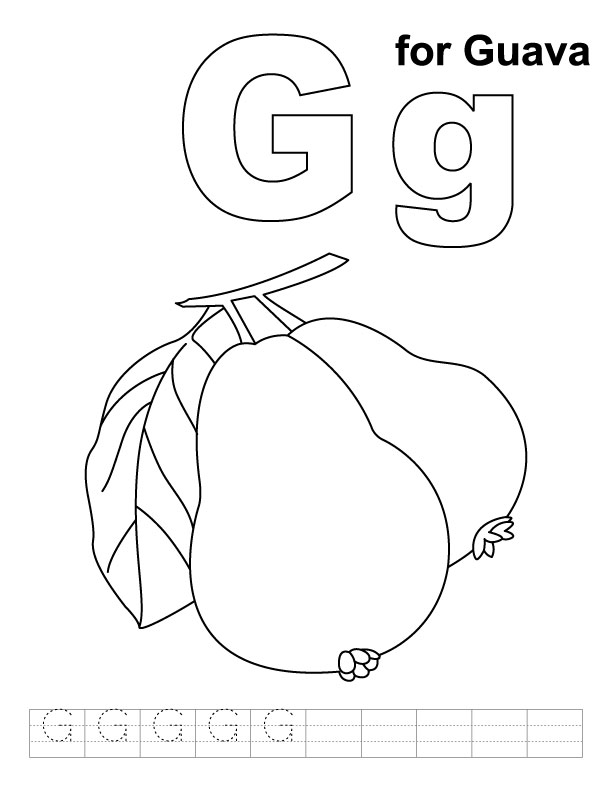 guava coloring pages guava and its cross section coloring page free printable pages guava coloring