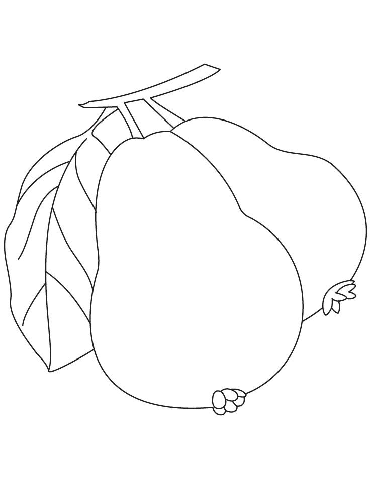 guava coloring pages guava coloring pages coloring pages guava