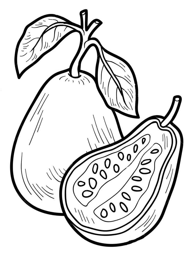 guava coloring pages guava coloring pages part 2 coloring pages guava