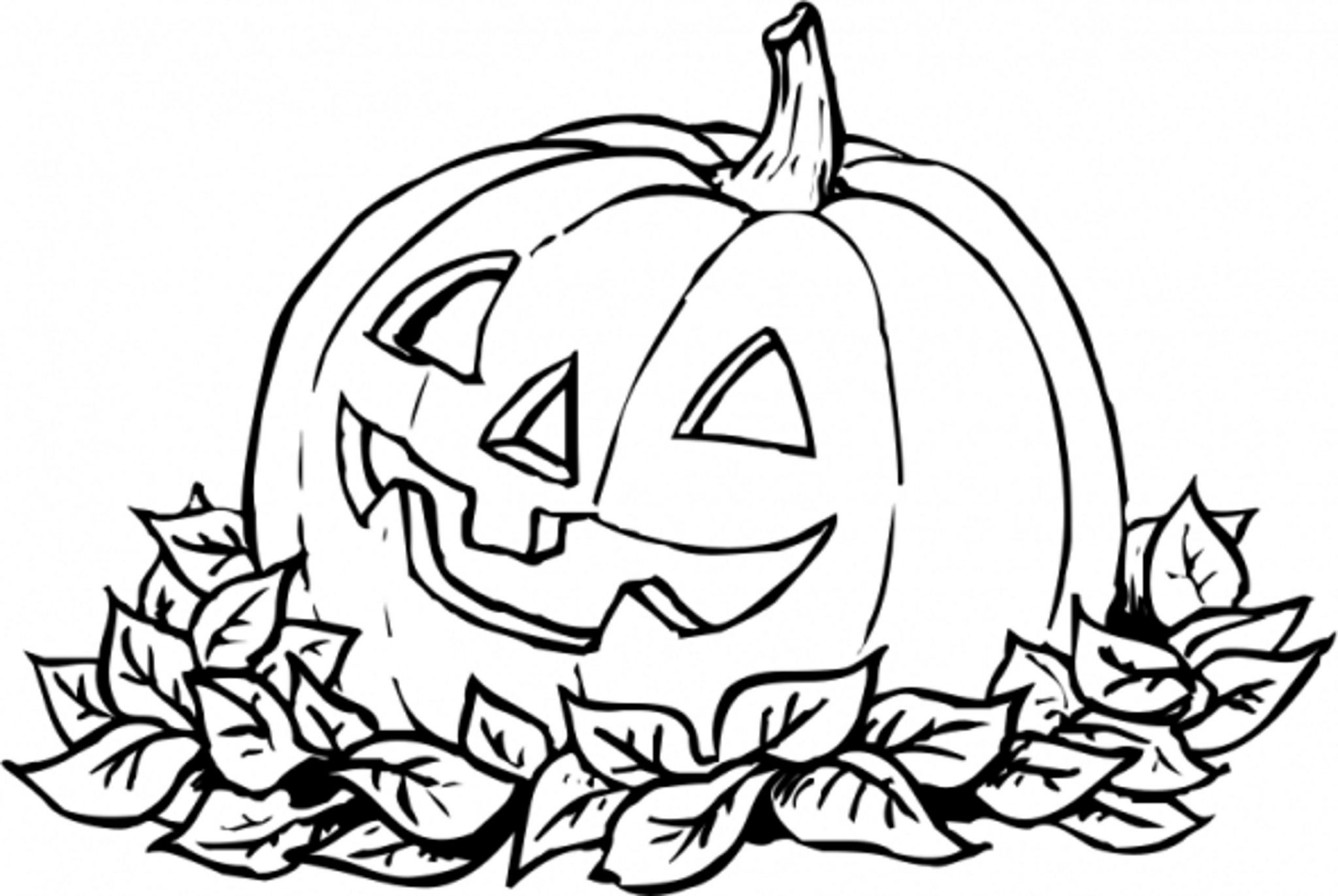 halloween pictures of pumpkins to color pumpkin drawing for kids at getdrawings free download pumpkins halloween color to of pictures