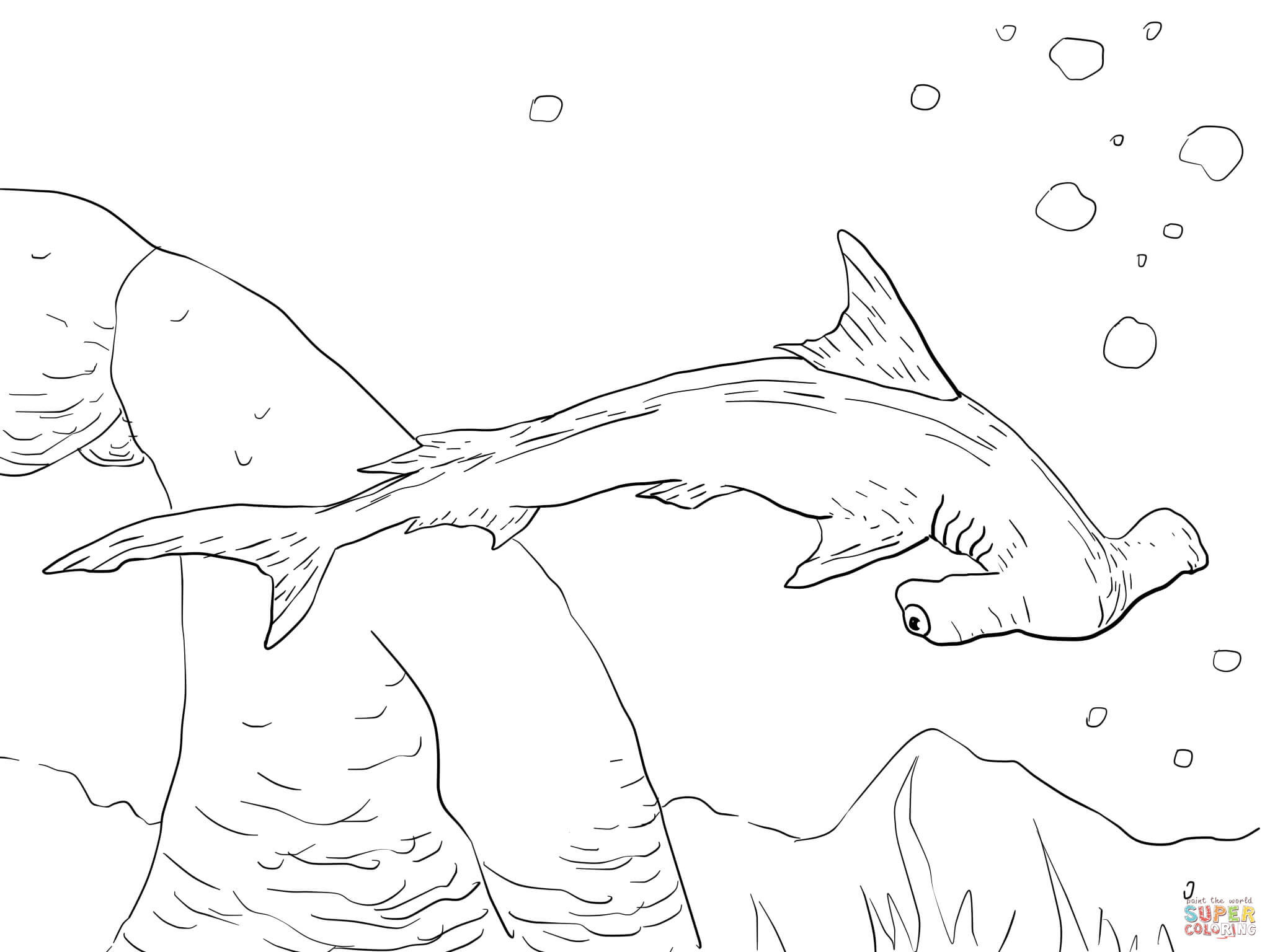hammerhead shark pictures to color hammerhead shark coloring pages free coloring home color to pictures hammerhead shark