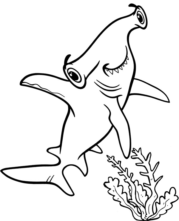 hammerhead shark pictures to color hammerhead shark coloring pages to print shark hammerhead pictures color to