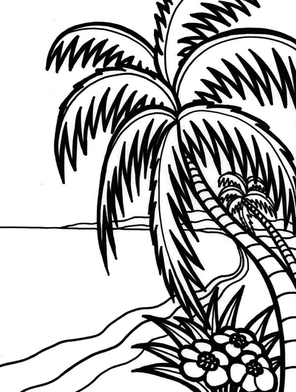 hawaii coloring page hawaiian coloring pages for kids clip art library hawaii page coloring