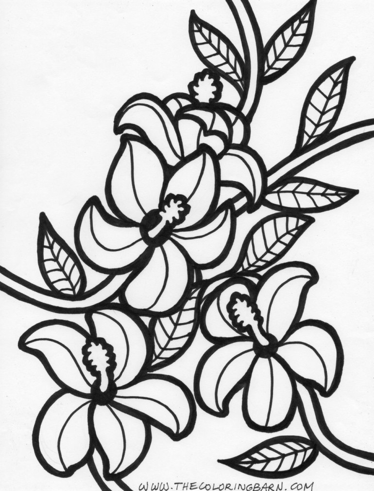 hawaiian flower coloring coloring pages hawaiian flowers collection free coloring hawaiian flower coloring
