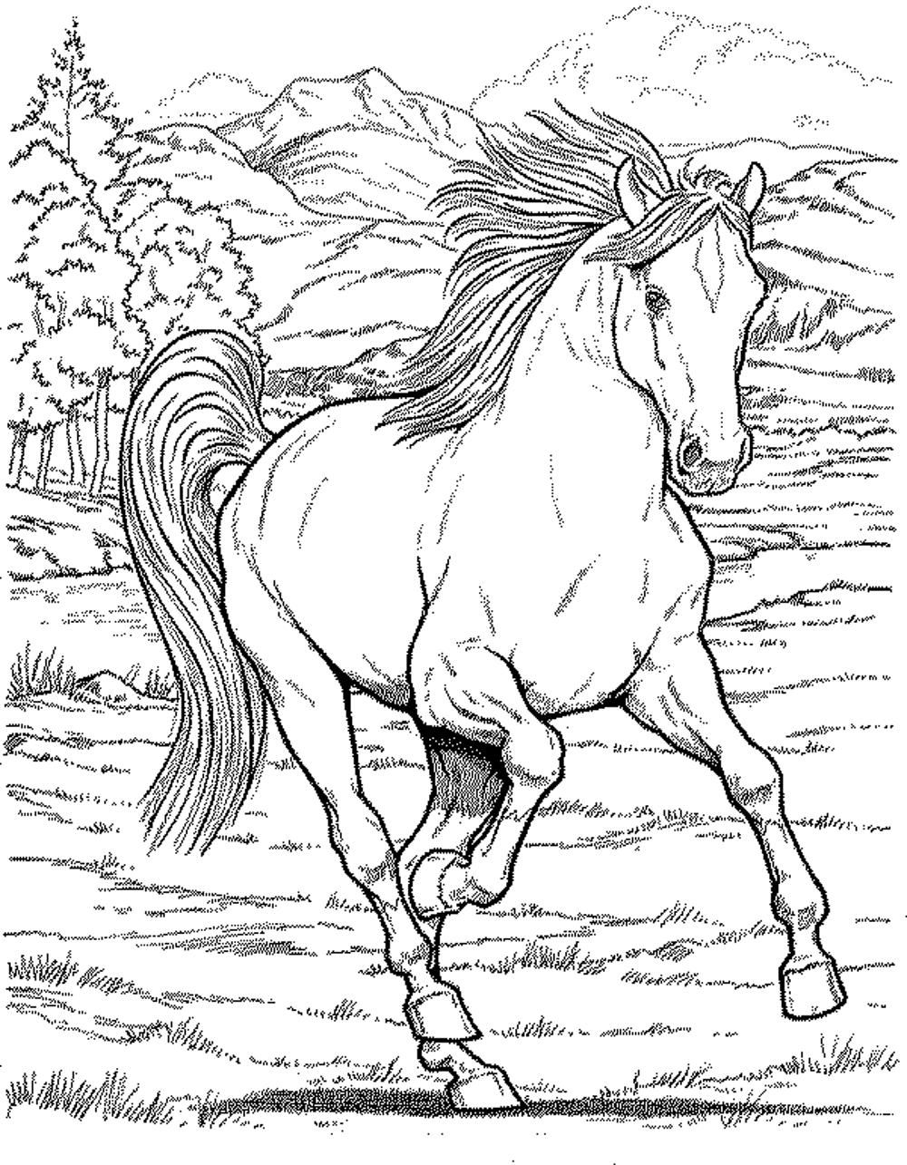 horse coloring pages for girls flying horse by elfkena on deviantart girls pages coloring for horse