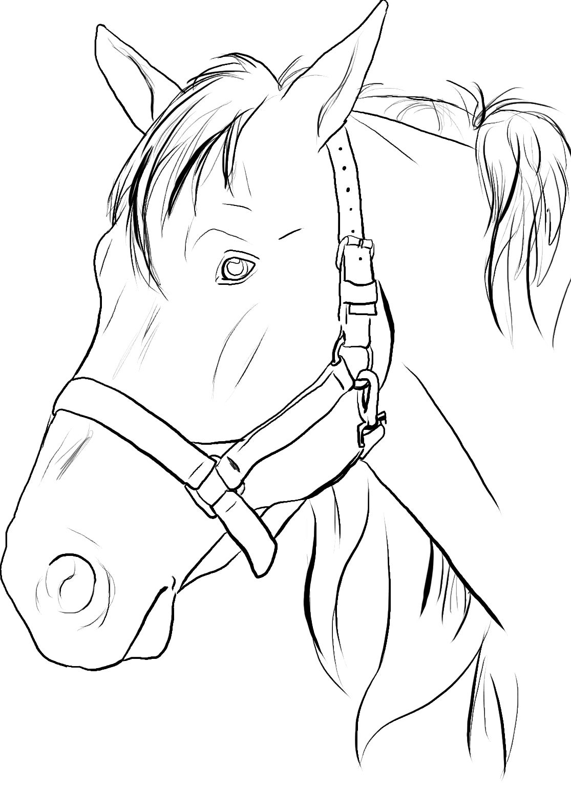 horse coloring pages for girls girl and horse jumping coloring pages coloring home coloring horse pages girls for