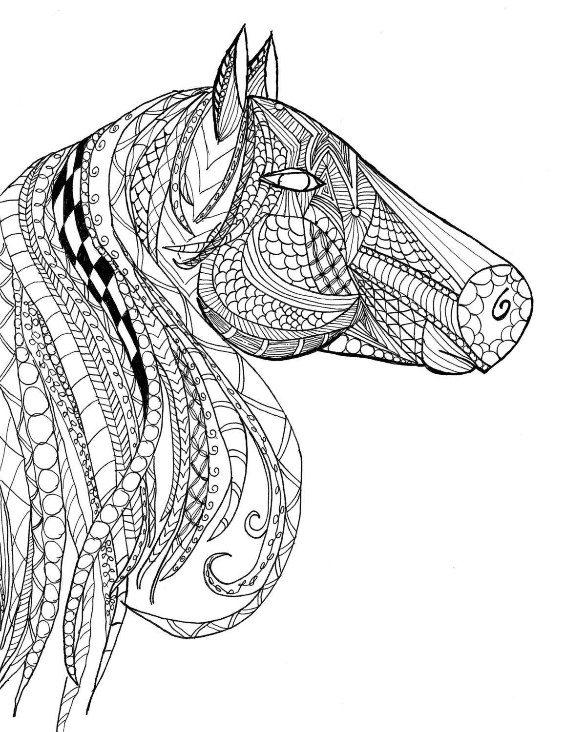 horse coloring pages free horse coloring pages for kids coloring pages for kids coloring horse pages free