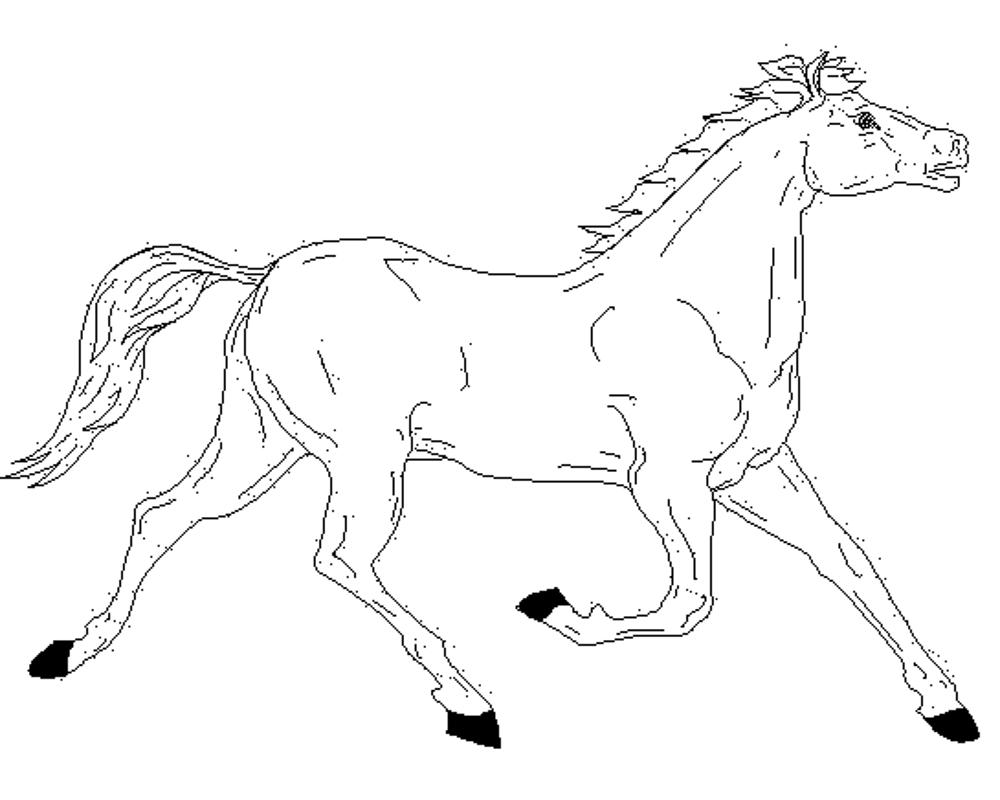 horse coloring pages free horse coloring pages for kids coloring pages for kids horse coloring pages free
