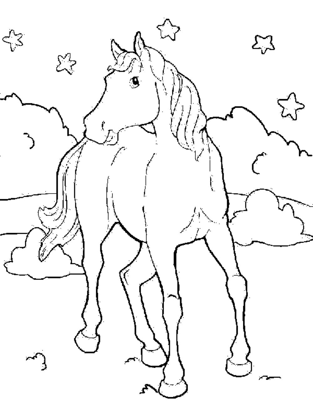 horse coloring pages free horse coloring pages free horse coloring free pages