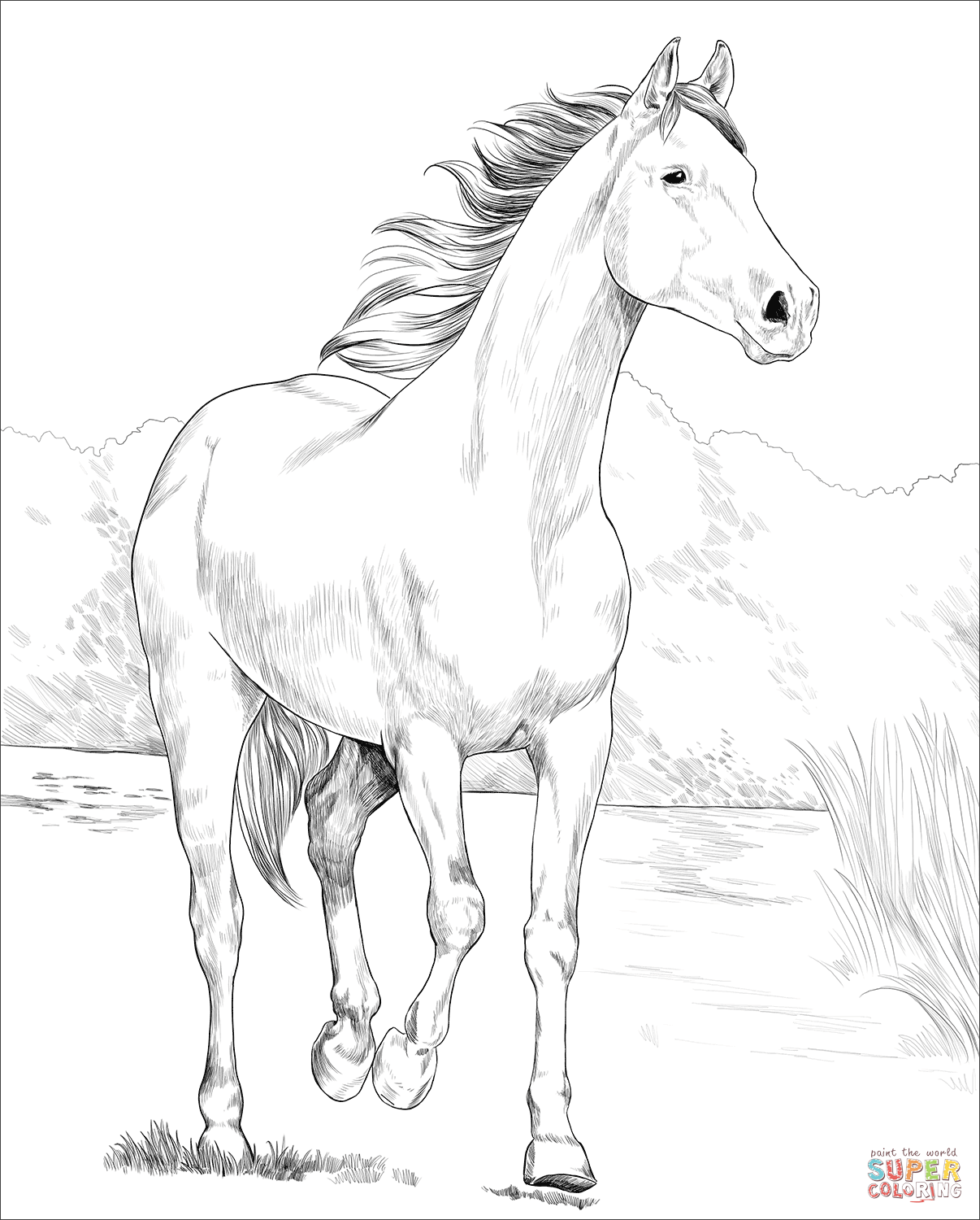 horse coloring pages online animals coloring pages horses coloring pages horse online coloring pages horse