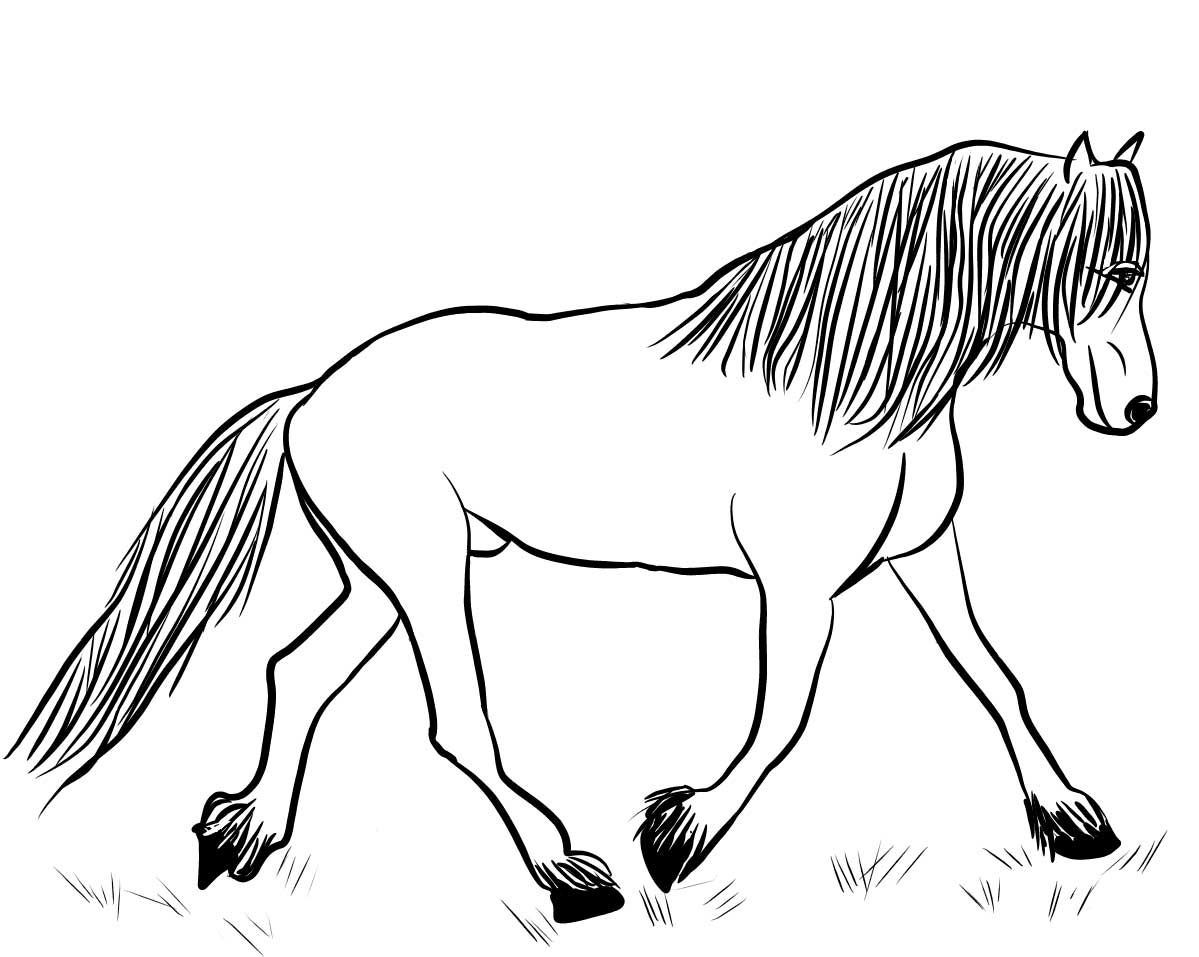 horse coloring pages online horse coloring pages free printable online horse pages horse online coloring