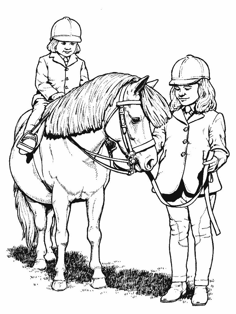 horse pictures to color coloring pages horses heads ribbon print coloring home color pictures to horse