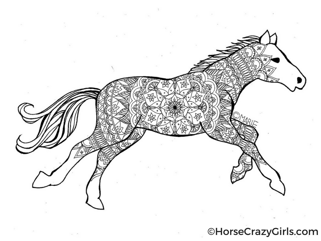 horse printables coloring pages free horse coloring pages coloring printables horse pages
