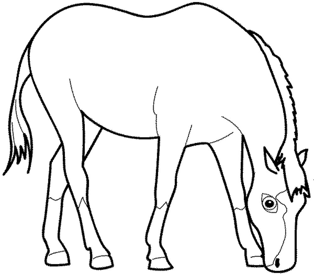 horse printables coloring pages palomino horse coloring pages download and print for free horse printables pages coloring