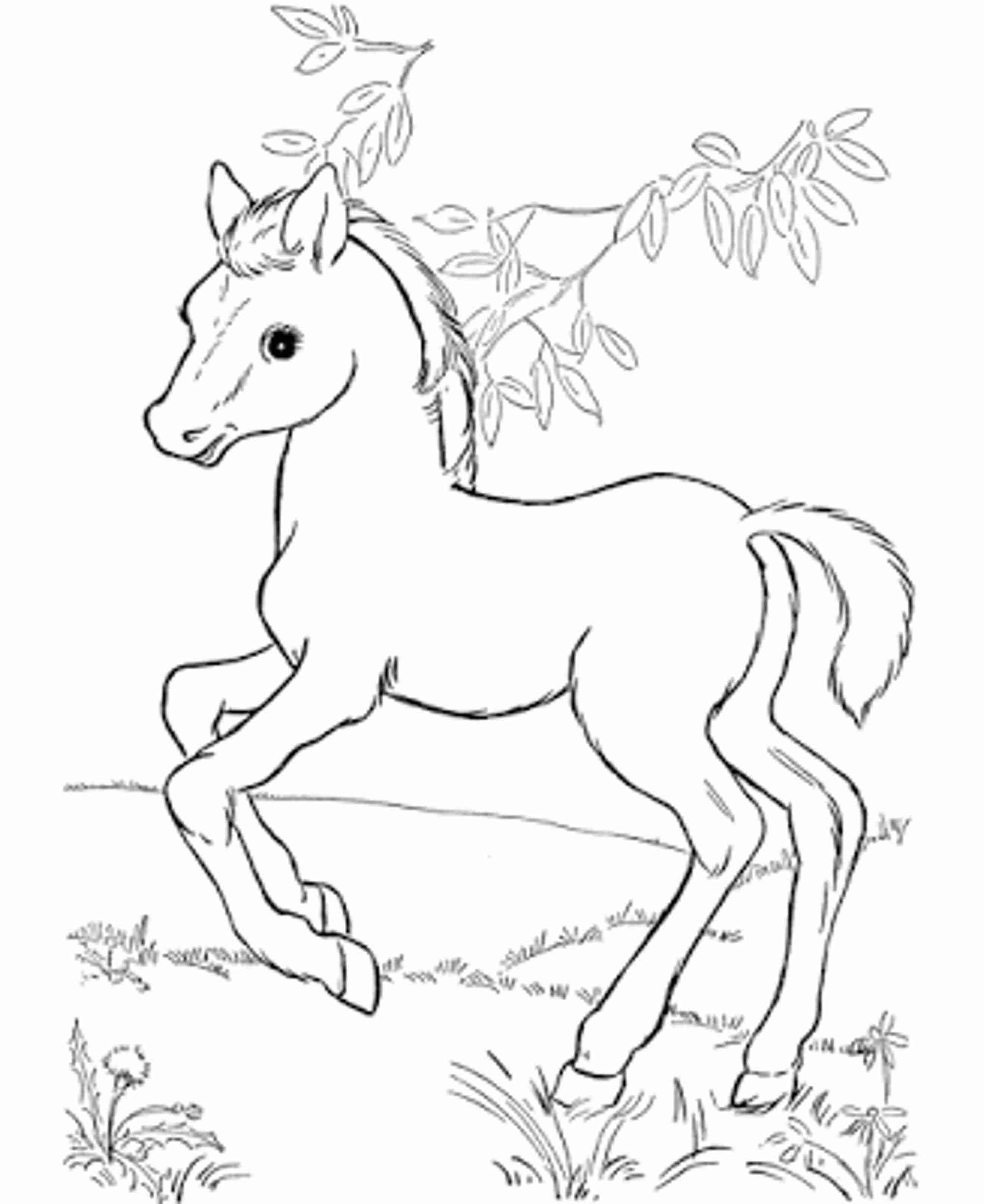 horses to print and color hand drawn horse for adult coloring page art therapy stock color print to and horses