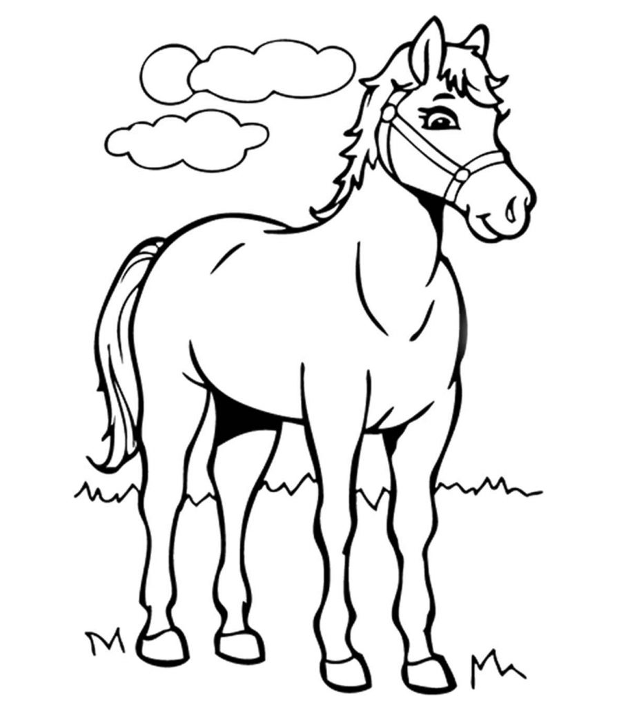 horses to print and color horse coloring pages preschool and kindergarten and horses color print to