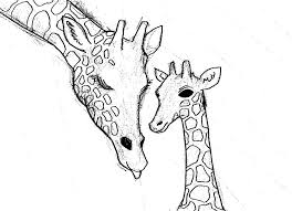 how do you draw a giraffe step by step how to draw a giraffe step by step pictures cool2bkids how step do giraffe draw a you step by
