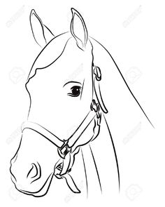 how to draw a baby horse baby horse foal drawing stock illustration illustration to draw baby how a horse