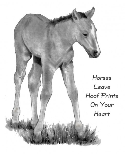 how to draw a baby horse horse drawing in pencil easy best animal drawings how baby to a draw horse