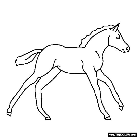 how to draw a baby horse horse easy drawing how to draw a horse youtube draw a baby to how horse