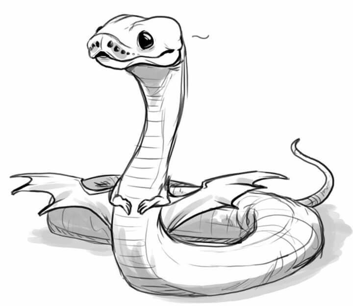how to draw a ball python visual note taking people sketch coloring page draw python ball a to how