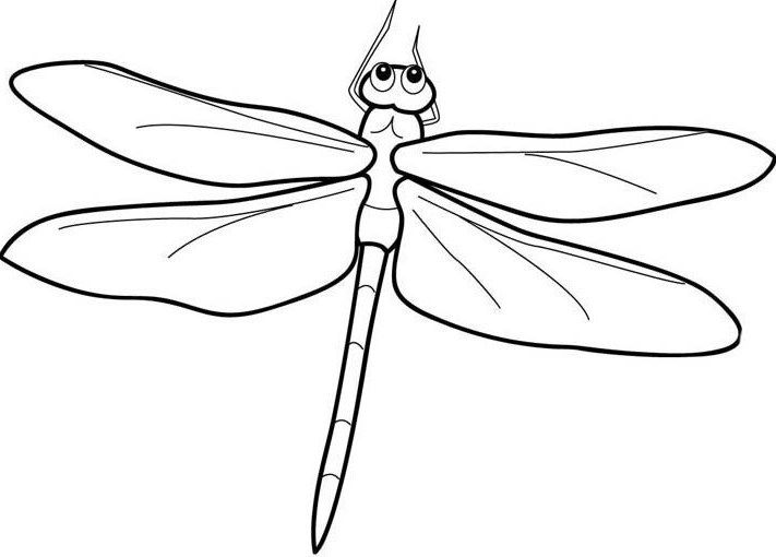 how to draw a dragonfly for kids how to draw a dragonfly name drawings bugs drawing to dragonfly draw a kids for how