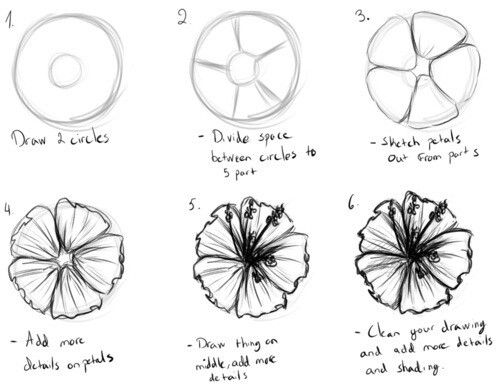 how to draw a geisha step by step how to draw a flower drawing flower drawing tutorials draw a step by step geisha to how