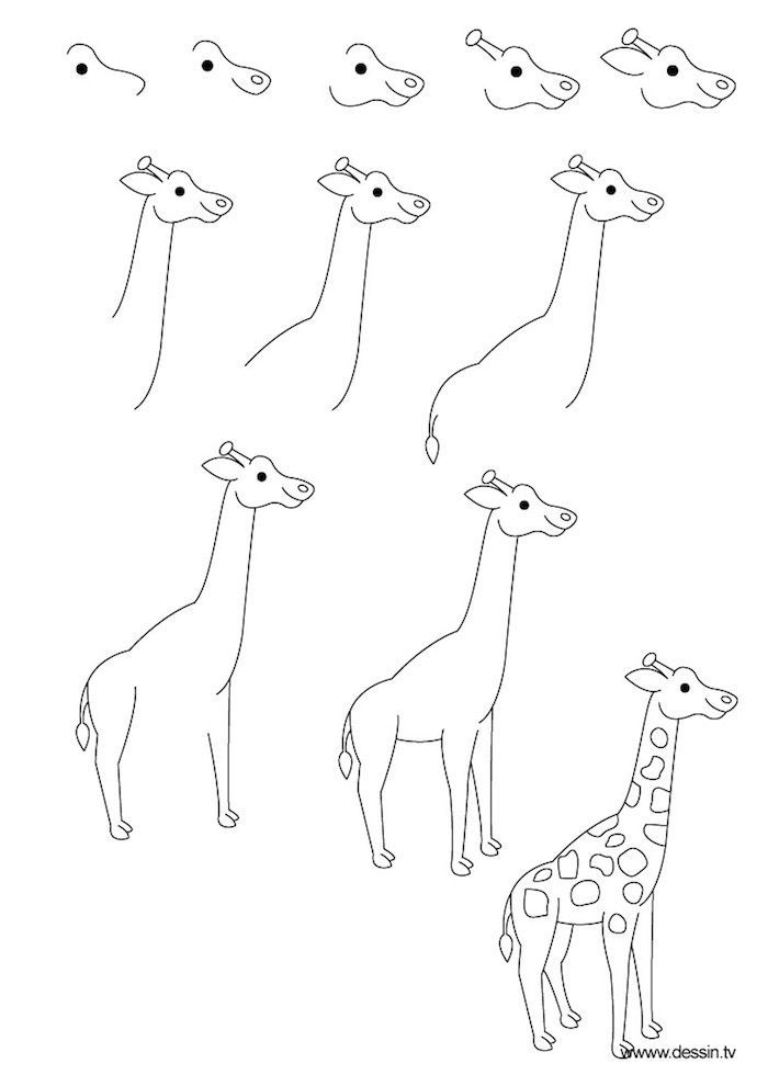 how to draw a geisha step by step how to draw a giraffe instructions in eleven steps for how to draw by a step geisha step