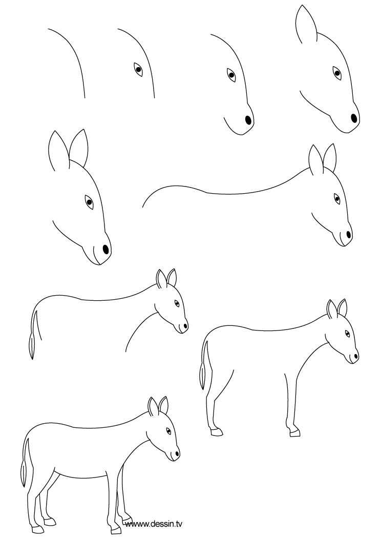 how to draw a mule fpencil how to draw donkey for kids step by step a draw mule how to